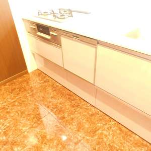 高田馬場住宅(2階,)のキッチン