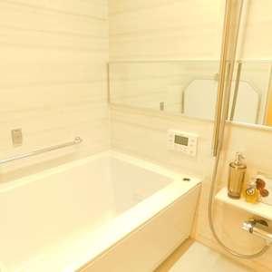 ニュー池袋ハイツ(12階,3699万円)の浴室・お風呂