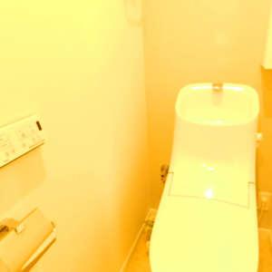 ニュー池袋ハイツ(12階,3699万円)のトイレ