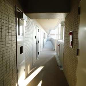 ソネット上池袋(9階,)のフロア廊下(エレベーター降りてからお部屋まで)
