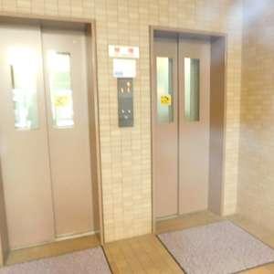 ソネット上池袋のエレベーターホール、エレベーター内
