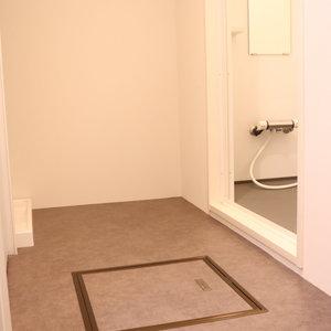 ハイネス小石川(1階,4380万円)の化粧室・脱衣所・洗面室