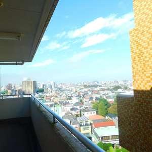 コスモ上池袋(11階,)のフロア廊下(エレベーター降りてからお部屋まで)
