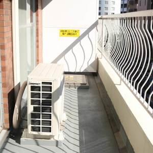 パラシオン本郷(5階,)のバルコニー