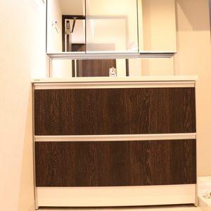 パラシオン本郷(5階,)の化粧室・脱衣所・洗面室