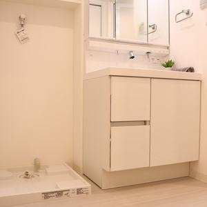 赤門ロイヤルハイツ(11階,)の化粧室・脱衣所・洗面室