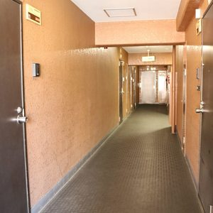 赤門ロイヤルハイツ(11階,)のフロア廊下(エレベーター降りてからお部屋まで)