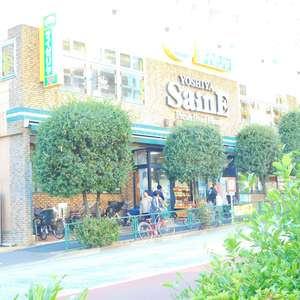 ブラザー若林マンションの周辺の食品スーパー、コンビニなどのお買い物