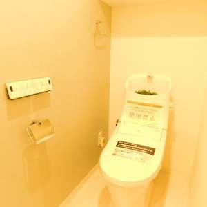 文京目白台ハイツ(3階,3498万円)のトイレ