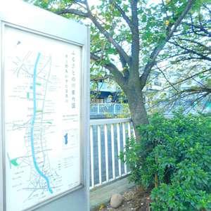 サードリハイツ本館の近くの公園・緑地
