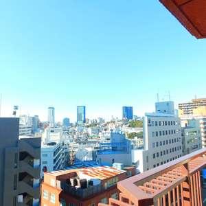 サングリア中目黒(11階,4999万円)のお部屋からの眺望
