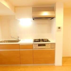 護国寺ロイアルハイツ(2階,3680万円)のキッチン