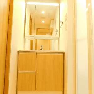 護国寺ロイアルハイツ(2階,3680万円)の化粧室・脱衣所・洗面室