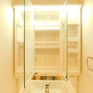 護国寺ロイアルハイツ(2階,)の化粧室・脱衣所・洗面室