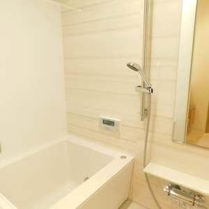 護国寺ロイアルハイツ(2階,)の浴室・お風呂