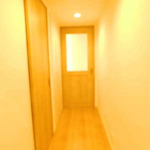 護国寺ロイアルハイツ(2階,)のお部屋の廊下