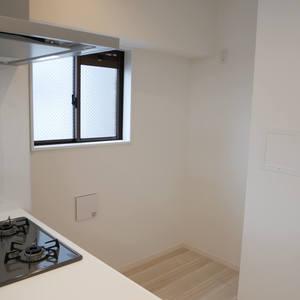 ダイアパレス元浅草ブライトスクエア(7階,4580万円)のキッチン