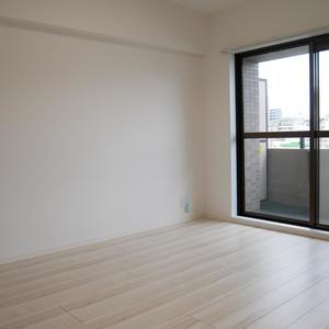 ダイアパレス元浅草ブライトスクエア(7階,4580万円)の洋室