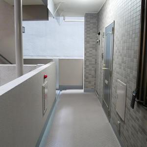 ダイアパレス元浅草ブライトスクエア(4階,4680万円)のフロア廊下(エレベーター降りてからお部屋まで)