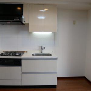 ダイナシティ雷門(2階,3180万円)のキッチン