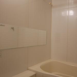 ダイナシティ雷門(2階,3180万円)の浴室・お風呂
