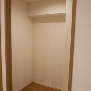 柳恵キングハイツ(6階,3480万円)のウォークインクローゼット