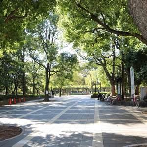 清澄公園ガーデンハウスの近くの公園・緑地