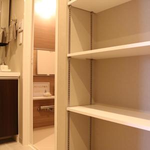 清澄公園ガーデンハウス(4階,5999万円)の化粧室・脱衣所・洗面室