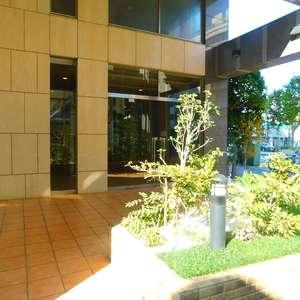 ルイシャトレ早稲田のマンションの入口・エントランス
