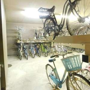 ルイシャトレ早稲田の駐輪場