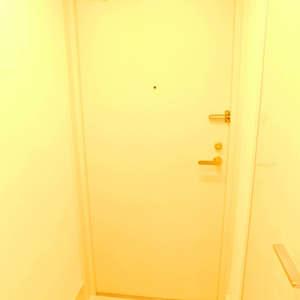 ルイシャトレ早稲田(13階,)のお部屋の玄関