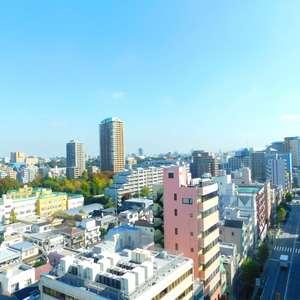 ルイシャトレ早稲田(13階,)のお部屋からの眺望