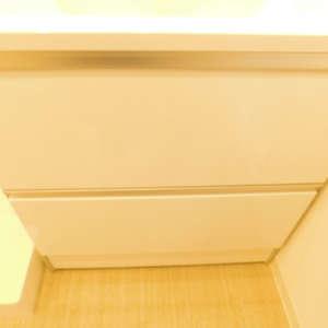 ルイシャトレ早稲田(13階,)の化粧室・脱衣所・洗面室