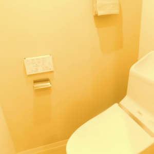 ルイシャトレ早稲田(13階,)のトイレ