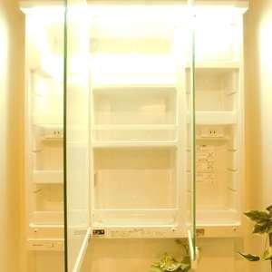 中目黒ハイツ(13階,)の化粧室・脱衣所・洗面室