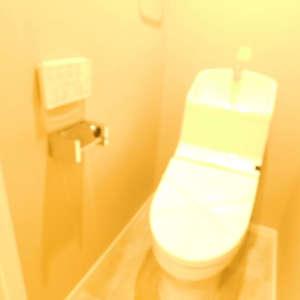 第25宮庭マンション(3階,)のトイレ