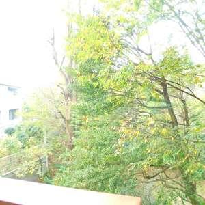 パシフィック哲学堂マンション(3階,)のお部屋からの眺望