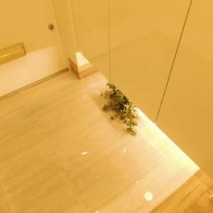 コートアドヴァンス(3階,)のお部屋の玄関