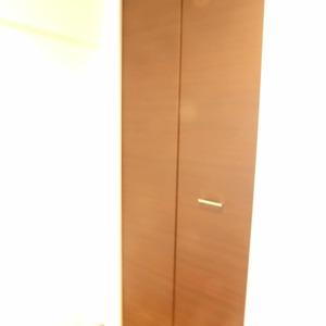 クレセントマンション(5階,5980万円)のウォークインクローゼット