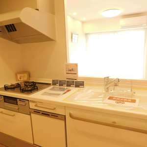 ライオンズガーデン駒込(3階,)のキッチン