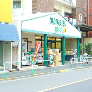 ライオンズガーデン駒込の周辺の食品スーパー、コンビニなどのお買い物