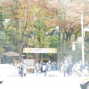 ライオンズガーデン駒込の近くの公園・緑地