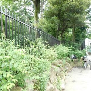 高田マンションの近くの公園・緑地