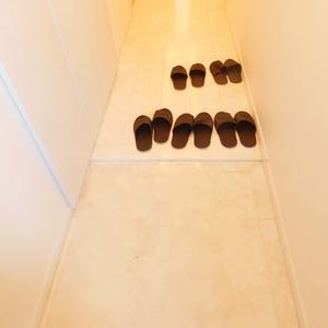 ベルメゾン小石川植物園(5階,)のお部屋の玄関