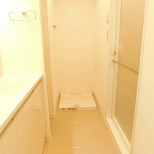 ベルメゾン小石川植物園(5階,)の化粧室・脱衣所・洗面室