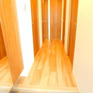 マイキャッスル小石川(3階,)のお部屋の玄関