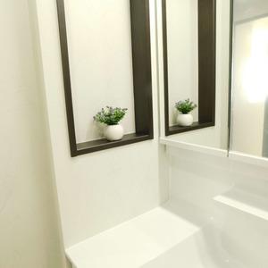 パークサイド小石川植物園(3階,7800万円)の化粧室・脱衣所・洗面室