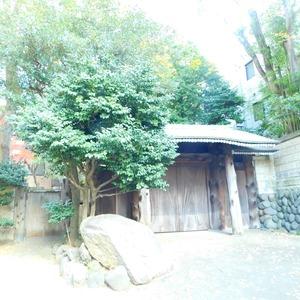 パークサイド小石川植物園のその他周辺施設