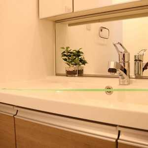 サンパレス駒込壱番館(7階,6799万円)の化粧室・脱衣所・洗面室