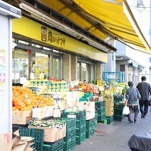 朝日動坂マンションの周辺の食品スーパー、コンビニなどのお買い物